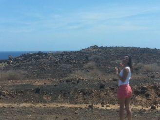 Ziegen entdecken auf Fuerteventura