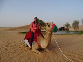 Kamel reiten und Karriere Vereinigte Arabische Emirate Nannette Neubauer Ales Consulting International Nannette Neubauer