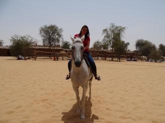 Reiten in der Wüste - Vereinigte Arabische Emirate - Ausflug in der Wüste - Personalberatung Nannette Neubauer Ales Consulting International Nannette Neubauer