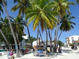 Tauchsport Malediven Erfahrung