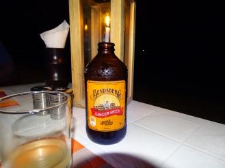 Ginger Beer Alkoholfrei Malediven