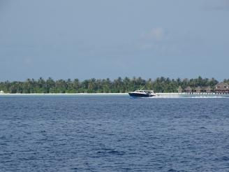 Erfahrungen Hotelpraktikum Malediven Ales Consulting International