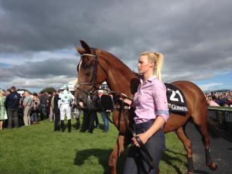 Horse Races Ireland Experience