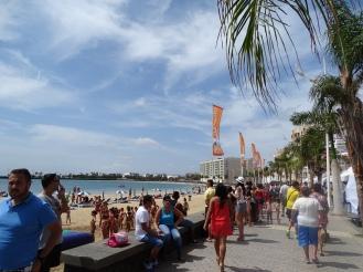 Arrecife Lanzarote Praktikum Ales Consulting International