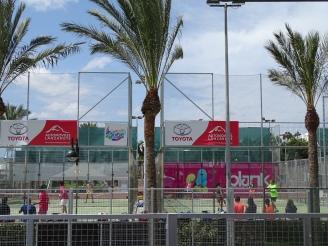 Paddel Sport Lanzarote Auslandspraktikum Ales Consulting International