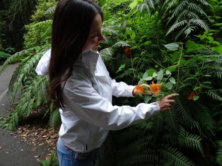 Inselhopping Kanaren - Blütenpracht La Palma beim Wandern entdeckt