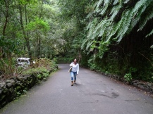 Wanderung Kanaren La Palma Ales Consulting International