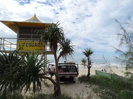 Lifeguard Goldcoast - Beach - Surf - Incentive Event - Internship - Ales Consulting International
