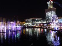Darling Harbour Sydney - Vivid Festival Show - Ales Consulting International Australien