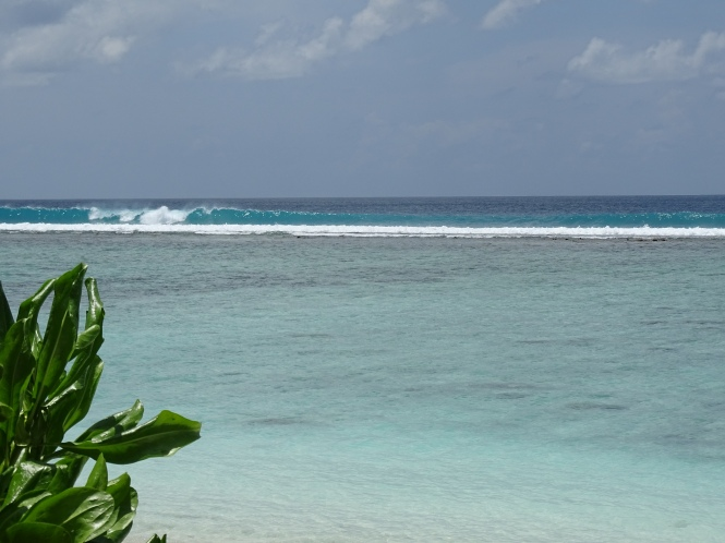 ocean-maldives-ales-consulting-international