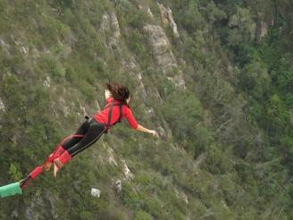 Bungy Jump Nannette Neubauer Ales Consulting International Südafrika Erfahrung
