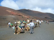 lanzarote-2017-ales-consulting-international-nationalpark