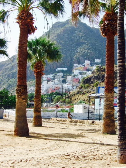 santa-cruz-playa-de-las-terasitas-erfahrung-praktikum-ales-consulting-international