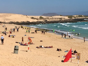 surfen-lernen-fuerteventura-ales-consulting-international