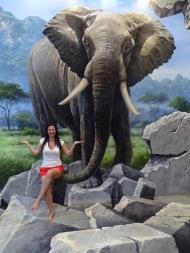 Nannette Neubauer Ales Consulting International Praktikum Malaysia