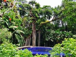 Botanical Garden Kuala Lumpur Malaysia