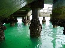 Inselhopping Malaysia
