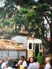 Sri Lanka Dorf