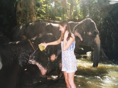 Sri Lanka Elefanten Waschen