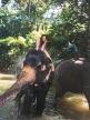 Sri Lanka Erfahrung