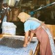 Ceylon Tea Factory Sri Lanka