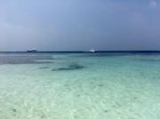 Malediven Erfahrung Praktikum