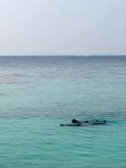 Malediven Schnorchel Erfahrungen