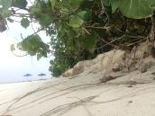 Malediven Praktikum Erfahrung