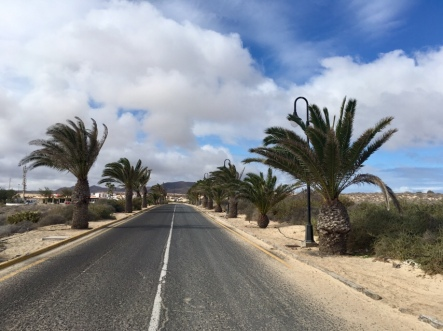 Fuerteventura Praktikum Ales Consulting International