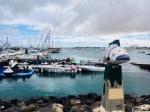 Fuerteventura Corralejo Hafen