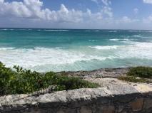 Mexiko Riviera Maya Tiere und Meer
