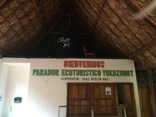 Cenote Erfahrungen Ecoturismus Mexiko