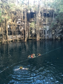 Cenote Swimming Mexico