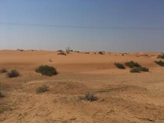 VAE Wüste
