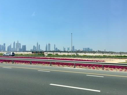 Dubai Taxi Erfahrungen
