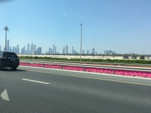 Dubai City Tour by Taxi