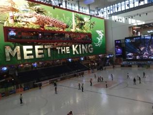 Schlittschuh laufen Dubai Mall