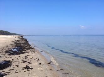 Schätze am Strand - Ostsee
