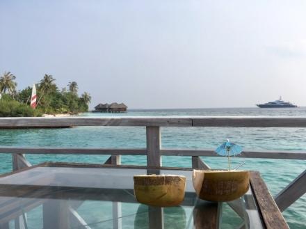 F&B Praktikum Malediven Ales Consulting International