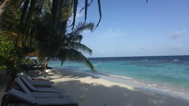 Malediven Strand Auslandspraktikum