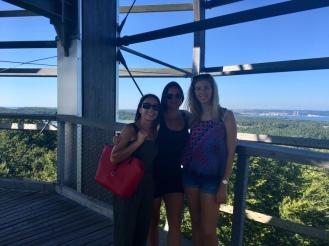 Ausflug Baumwipfelpfad Erfahrungen Ales Consulting International