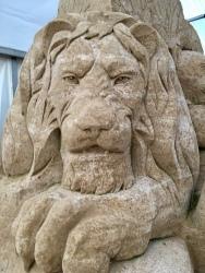 Löwen sieht man nur in Afrika? Jetzt auch in Binz auf Rügen