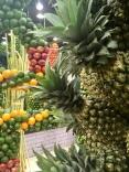 In Dubai vegan essen - Ales Incentives International