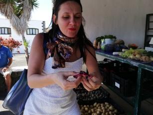 Wie isst man eine Higopico - Tuno (in kanarisch) - Kaktusfrucht
