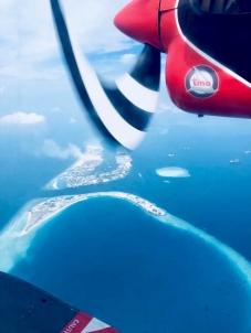 Flug mit dem Wasserflugzeug - stilsicher zum Praktikum - Ales Consulting International