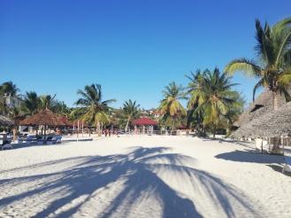 Auf zum Beach Volleyball