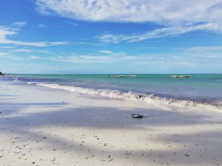 Einer der schönsten Strände im Osten Sansibars - Praktikum Ales Consulting International